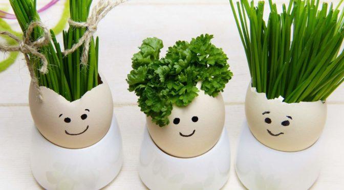 Snart påsk – vad lägger du i påskägget?